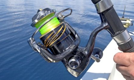 BlacktipH – Hooked Something Giant while Vertical Jigging and Bowfishing for Bonito