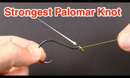 Salt Strong   How To Tie The STRONGEST Palomar Knot For Braid [Contest WINNER]