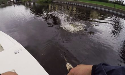 Lawson Lindsey – Huge Fish Topwater Blowup Boatside