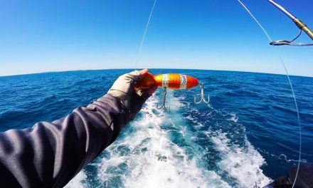 Lunkers TV – I Caught a RARE Fish in the Indian Ocean!!