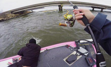 Lunkers TV – INSANE Winter Bass Fishing