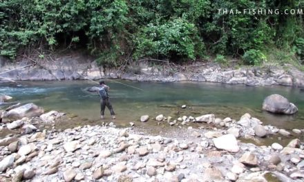Dan Decible – Mahseer Fly Fishing