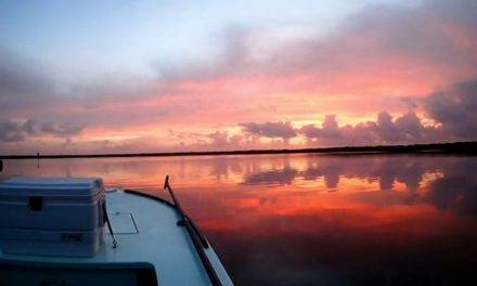 Dan Decible – Miami Fly Fishing via the Everglades Fly Fishing Snook, Tarpon and Redfish
