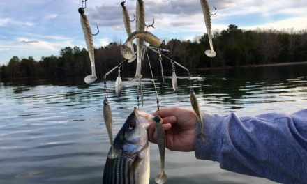 """Most ABSURD Fishing Lure?? The """"Chandelier"""" Alabama Rig — 9 Swimbaits"""