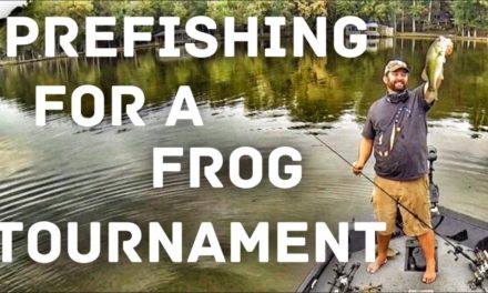 FlukeMaster – Prefishing for a Bass Fishing Tournament – The Spro Frog Open