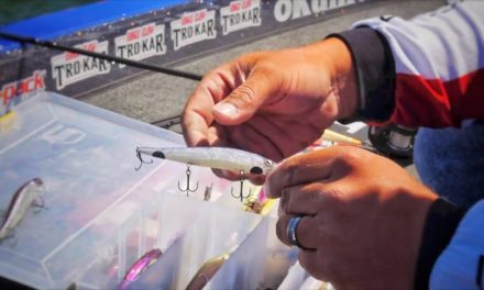 Scott Martin Pro Tips – Spring Time Jerk Bait Fishing Tips – The Things You Need To Know To Catch More Bass