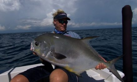 Tampa Bay Offshore Wreck Fishing for Permit with Capt Chad Manning
