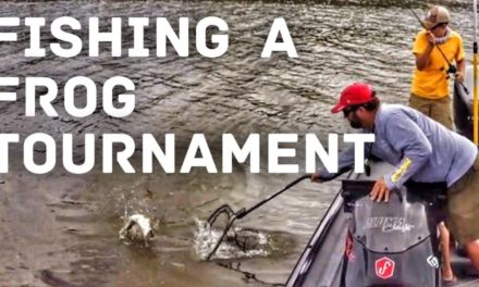 FlukeMaster – Topwater Bass Fishing – The Spro Frog Only Tournament