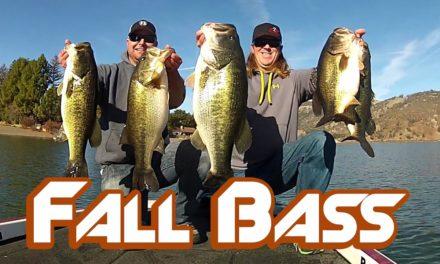 Bass Fishing: How to Catch BIG Bass in Fall