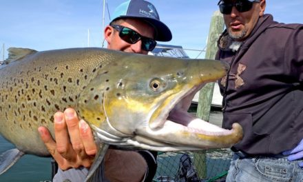 BlacktipH – Fishing for Monster Brown Trout by Downton Milwaukee on Lake Michigan – ft. Eric Haataja – 4K