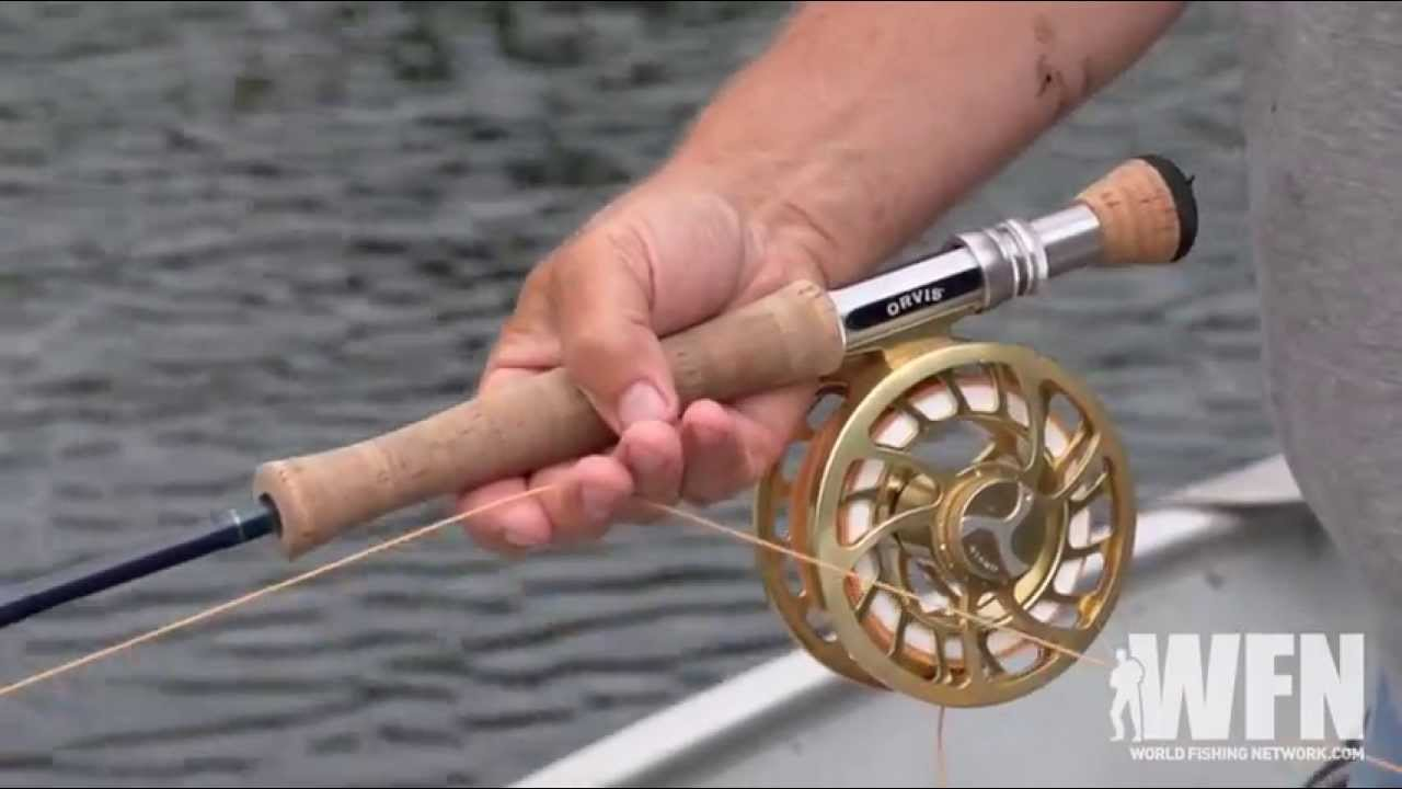 How to catch a bass while fly fishing angler hq for How to fly fish for bass
