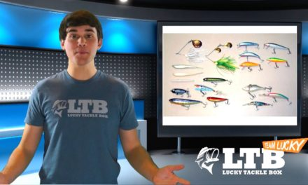 How to Fish Baits to Fit Conditions – Bass Fishing Tips