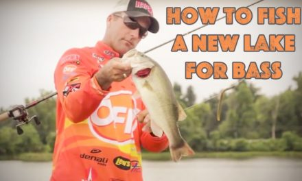 How to Fish a New Lake for Bass
