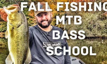 FlukeMaster – MTB Bass School – How to Fish what's in the box – Fall Fishing