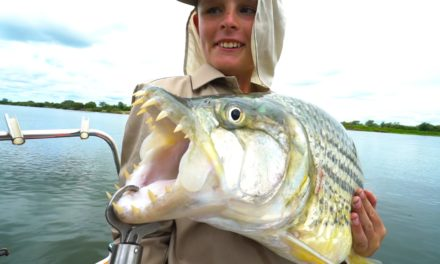 Lunkers TV – African River MONSTERS