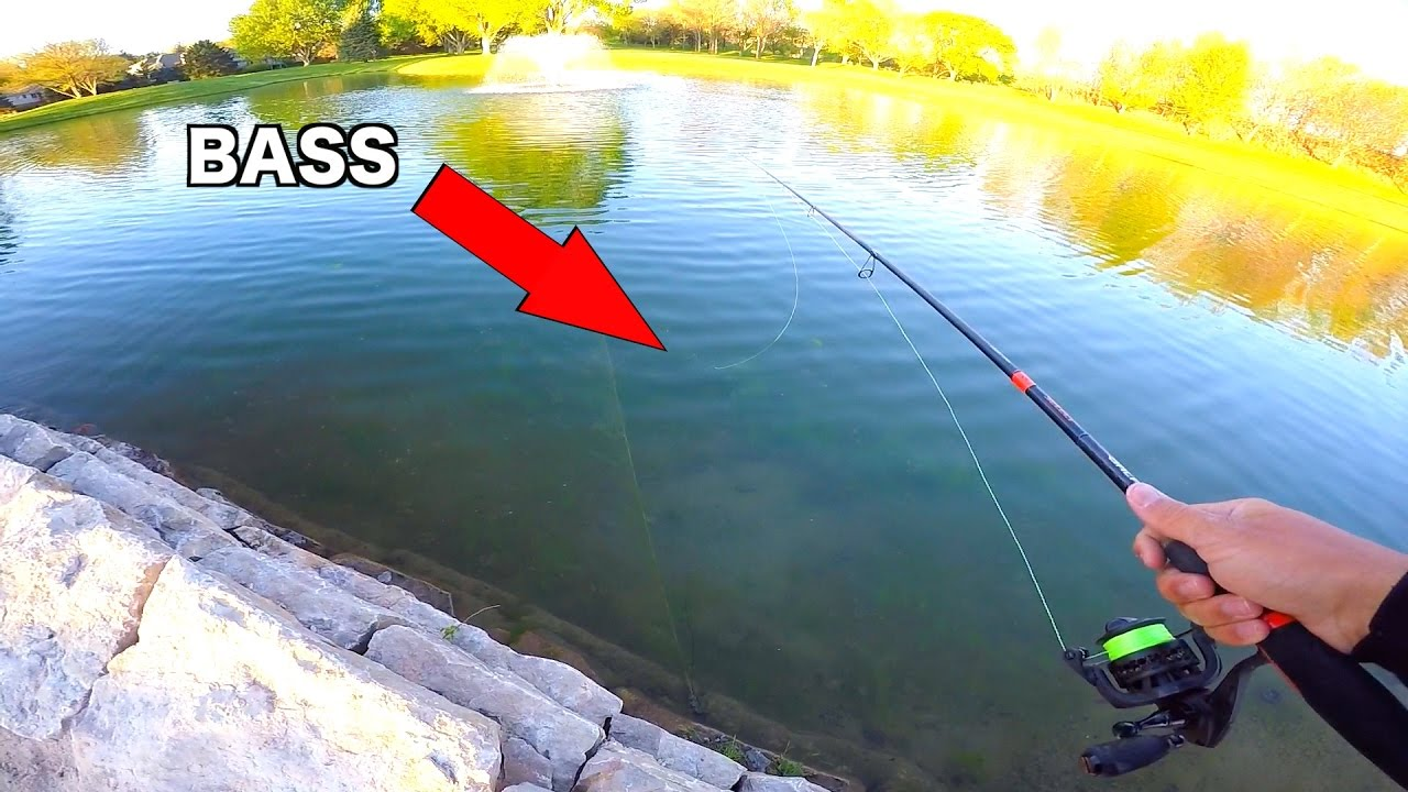Flair clear water golf course pond fishing challenge for Flair fishing rod