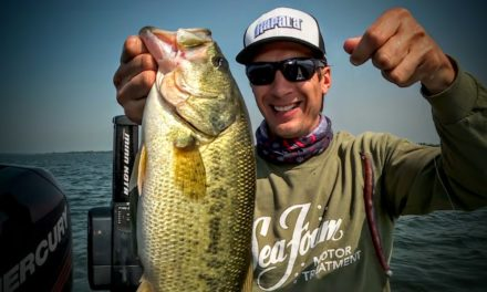 Deep Weed Largemouth – Lindner's Fishing Edge 2016 S13