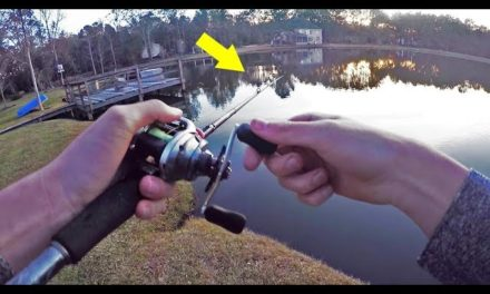 How To Catch MORE Winter Bass
