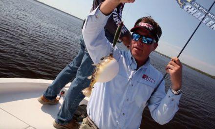 SMC Season 11.09 : Florida Everglades Slam in the 10,000 Islands Redfish, Snook & Trout