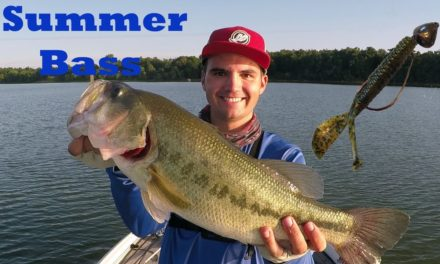The Secret to Catching Inactive Summer Bass