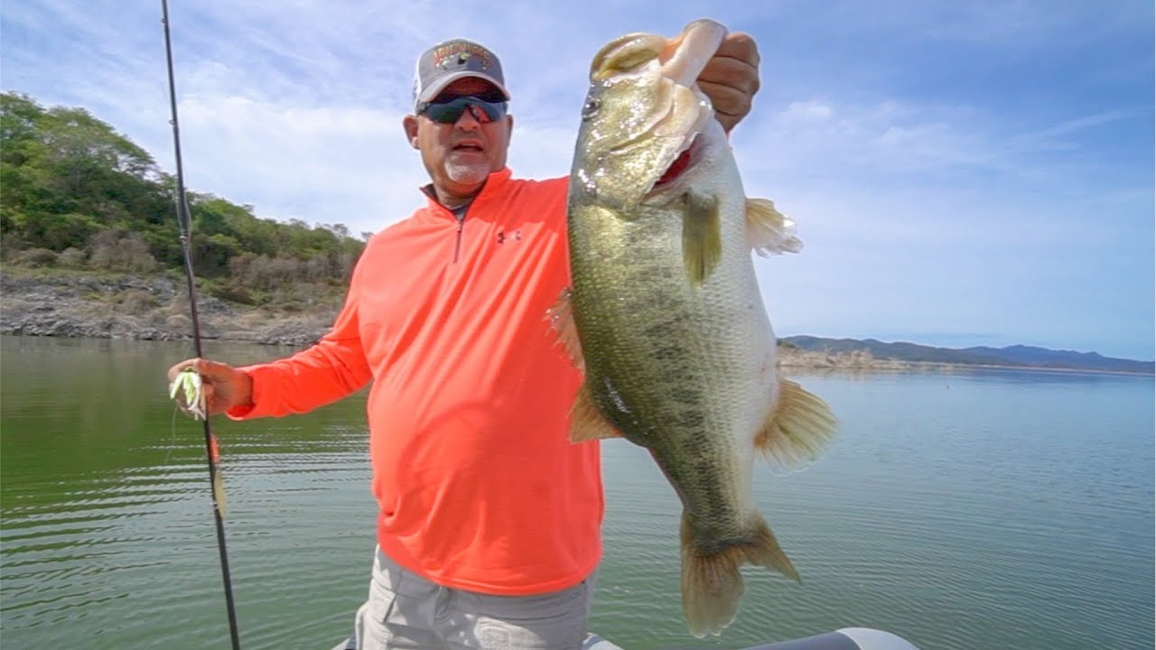 Unreal footage mega bass feeding frenzy angler hq for Flair fishing rod