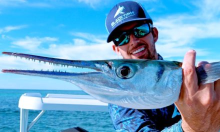 BlacktipH – Fishing for Aggressive Houndfish on the Flats in the Bahamas – 4K