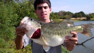 Fishing for Trophy Bass During Drought (Hat Cam Bass)