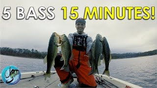 How to Pattern Fish for Bass | This Video Will Change How You Fish