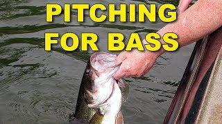 Pitching For Bass | Bass Fishing