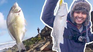 Early season Striped Bass fishing in San Francisco | 2,000 likes 👍 challenge