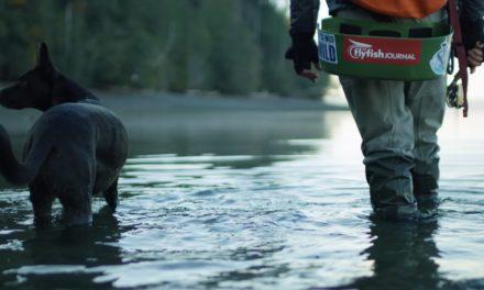 Dan Decible – Anatomy of a Fishing Story