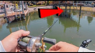 Dock Fishing Made Easy – How To Catch EVERY Bass!
