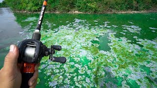 Flair – Fishing in TOXIC BLUE WATER!!!