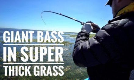 Scott Martin – GIANT BASS In Super Thick Grass – BEST DAY OF THE YEAR!!!
