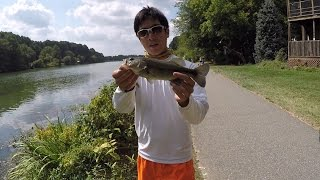 How to Properly Catch and Release a Bass by 1Rod1ReelFishing