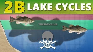 INTERMEDIATE GUIDE TO BASS FISHING: Part 2B – Lake Cycles (Thermocline/Turnover)