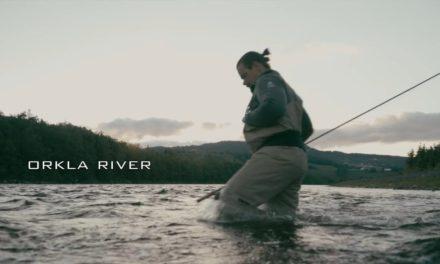 Dan Decible – Salmon – A short fly fishing tale