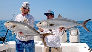 BlacktipH – Absolutely INSANE Topwater Amberjack Fishing Action – 4K