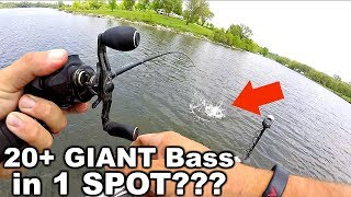 Best day EVER Fishing Swimbaits – 20+ GIANT Bass in 1 SPOT!!!