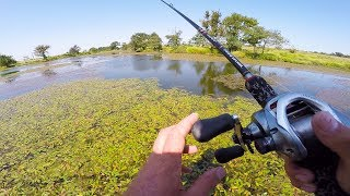 Lunkers TV – Big Bass love the sloppy nasty stuff!! Almost a New Personal Best for him