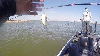 LakeForkGuy – PB Bass Spits Crankbait into MY Hand!