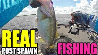 Real Fishing CRUSH Post Spawn BASS