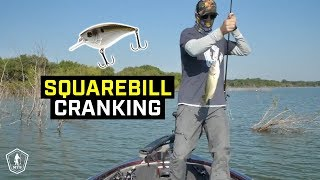 Squarebill Crankbait Fishing Tips To Catch More Shallow Water Bass