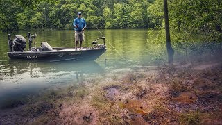 Why Finding Bluegills Can Lead to Better Bass Fishing