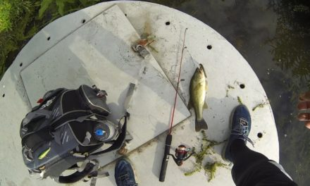 1Hour1FootRod Fishing Challenge