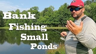 Bank Fishing – How to Fish Small Ponds in the Summer
