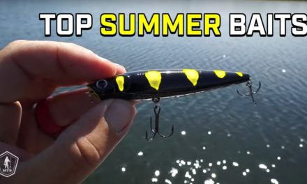 Best Summer Bass Fishing Lures with Milliken Fishing!