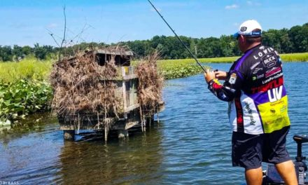 CATCH BIG BASS This Summer – How to Fish Current Secret Tips