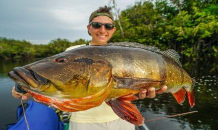 – Catching MASSIVE FISH in the Remote Jungle of BRAZIL!!!!
