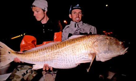 BlacktipH – Fishing for Monster Redfish in Virginia
